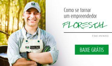 capa-ebook-empreendedor-florestal